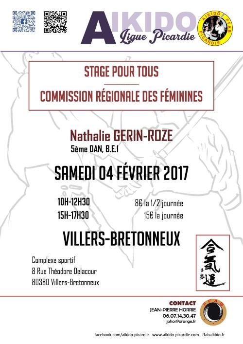 2017-02-04-VILLERSBRETONNEUX-NGERINROZE-F-mini
